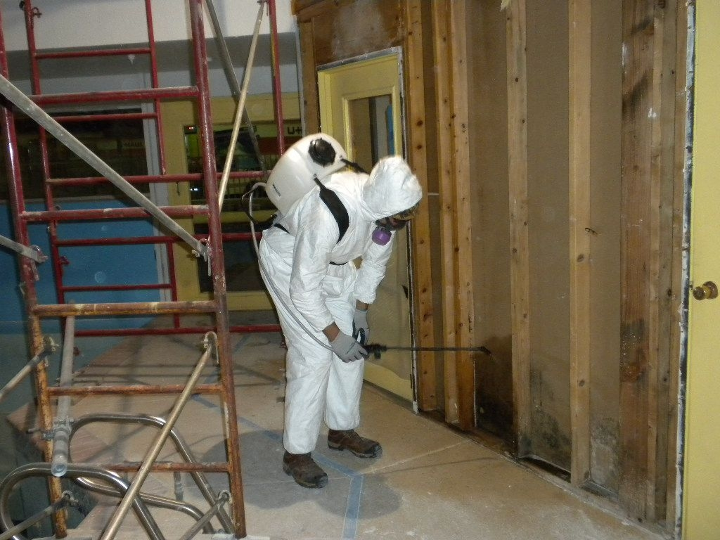Mold Remediation Columbia Md